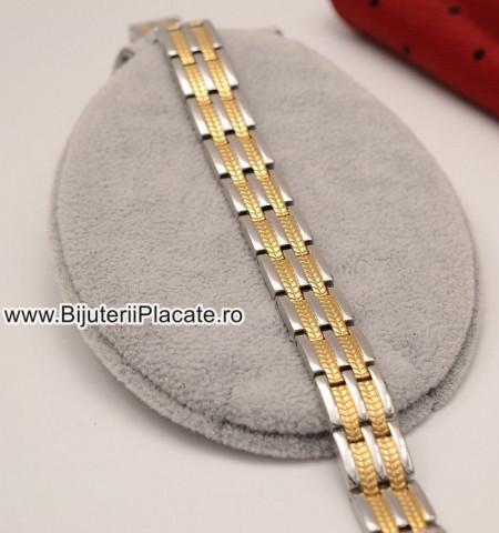 Bratara Inox in doua culori magnetica-- B883C