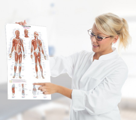 Slika Medicinski posteri za ordinacije ,Medical Wall Charts for Surgeries, Hospitals &