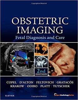 Slika Obstetric Imaging: Fetal Diagnosis and Care, 2e (Expert Radiology)