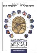 Slika Moždani i kičmeni živci: ilustrovani kompendijum