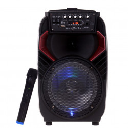 Boxa Bluetooth 100W, Karaoke, Card, USB, MP3