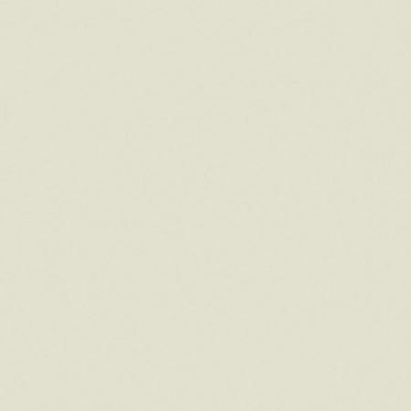 Tarkett Tapet PVC PROTECTWALL 2CR (CLEAN ROOMS) - Uni LIGHT BEIGE www.linoleum.ro