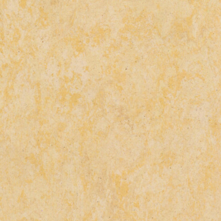 Linoleum Tarkett veneto eggshell 619 www.linoleum.ro