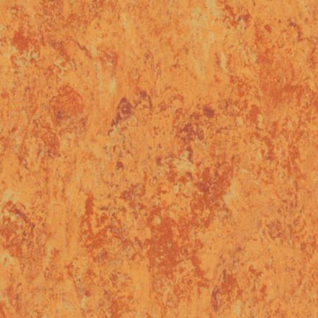 Linoleum Tarkett Veneto amber636 www.linoleum.ro