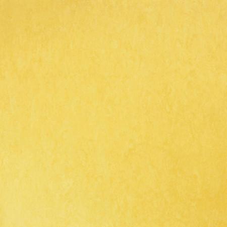 Linoleum Tarkett style emme giallo 219 www.linoleum.ro