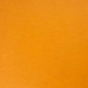 Linoleum STYLE EMME xf²™ (2.5 mm) - Style Emme ARANCIONE 218