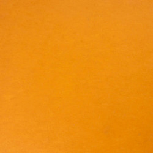 Linoleum Tarkett STYLE EMME xf²™ (2.5 mm) - Style Emme ARANCIONE 218