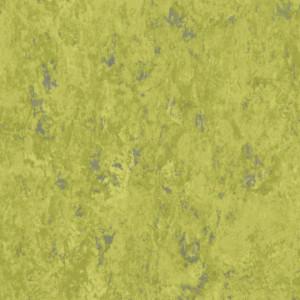Linoleum VENETO xf²™ (2.5 mm) - Veneto ABSINTHE 695