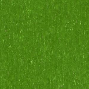 Tarkett Linoleum Trentino xf²™ Silencio 18dB (3,8 mm) - Trentino MOSS 552