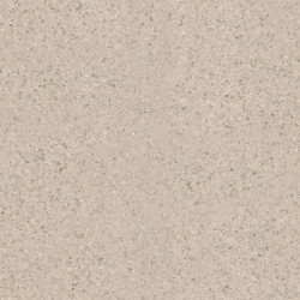 Linoleum Covor PVC Pardoseala Tarkett iQ ONE - LIGHT COLD BEIGE 0120