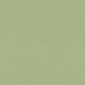 Linoleum Covor PVC TAPIFLEX ESSENTIAL 50 - Chambray GREEN