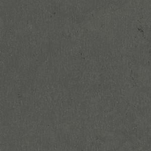 Linoleum Tarkett STYLE EMME xf²™ (2.5 mm) - Style Emme ASFALTO 207