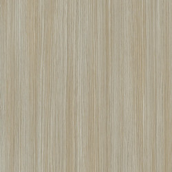 Linoleum Covor PVC Tarkett TAPIFLEX EXCELLENCE 80 - Allover Wood GREGE