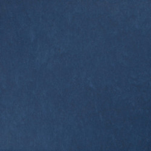 Linoleum STYLE EMME xf²™ (2.5 mm) - Style Emme BLUE 220