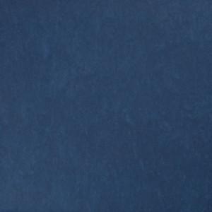 Linoleum Tarkett STYLE EMME xf²™ (2.5 mm) - Style Emme BLUE 220
