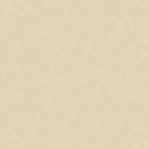 Linoleum Covor PVC Acczent Esquisse - Esquisse 01