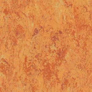 Linoleum Tarkett VENETO xf²™ (2.5 mm) - Veneto AMBER 636