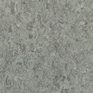 Tarkett Linoleum Veneto Essenza (2.5 mm) - Veneto ALUMINIUM 672