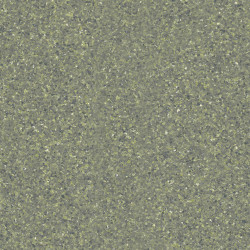 Linoleum Covor PVC Pardoseala Tarkett iQ ONE - DUSTY GREEN 0559