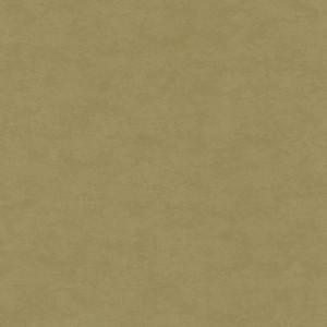 Linoleum Covor PVC TAPIFLEX ESSENTIAL 50 - Stamp OLIVE