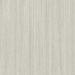 Linoleum Covor PVC Tarkett ACCZENT EXCELLENCE 80 - Allover Wood WHITE