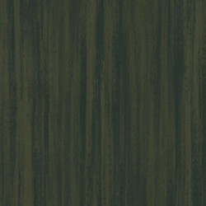 Linoleum Tarkett Originale Essenza 2.5 mm - Vegetale NUTMEG 450