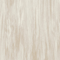 Covor PVC tip linoleum Tarkett VYLON PLUS - Vylon LIGHT WARM GREY 0581