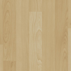 Linoleum Covor PVC Tarkett ACCZENT EXCELLENCE 80 - Beech Longstripe LIGHT