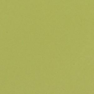Linoleum ETRUSCO xf²™ (2.5 mm) - Etrusco ANISE 095