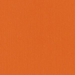 Linoleum ETRUSCO xf²™ (2.5 mm) - Etrusco ORANGE 037