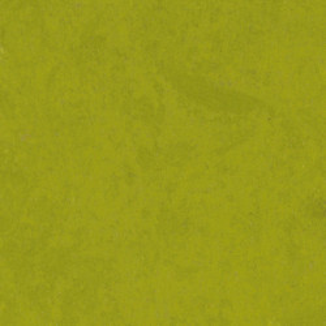 Linoleum STYLE EMME xf²™ (2.5 mm) - Style Emme VERDE 215