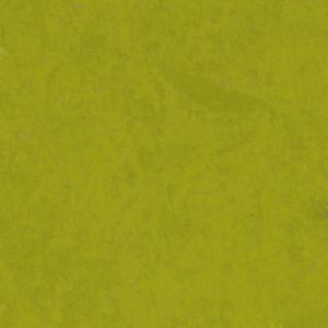 Linoleum Tarkett STYLE EMME xf²™ (2.5 mm) - Style Emme VERDE 215