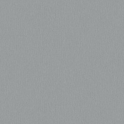 Linoleum Covor PVC Tarkett ACCZENT EXCELLENCE 80 - Brushed Alu GREY