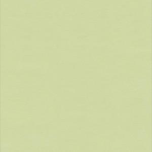 Tapet PVC WALLGARD - Wallgard GREEN