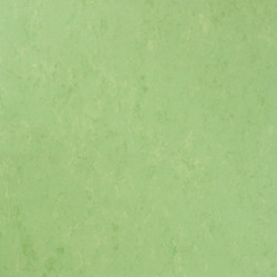 Tarkett Linoleum Veneto xf2 Bfl - Veneto APPLE GREEN 754