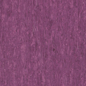 Covor PVC Tarkett tip linoleum IQ Optima - 255