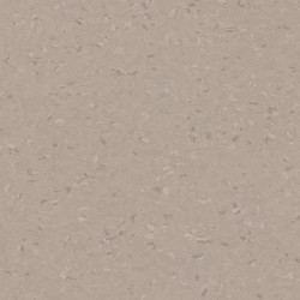 Covor PVC tip linoleum Tarkett iQ NATURAL - Natural DARK COLD BEIGE 0842
