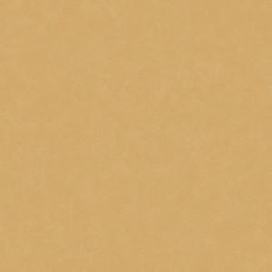 Linoleum Covor PVC Acczent Esquisse - Esquisse 05