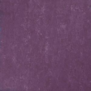 Linoleum Covor PVC Tarkett Linoleum VENETO xf²™ (2.5 mm) - Veneto BEGONIA 742