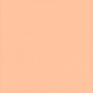 Tapet PVC WALLGARD - Wallgard ORANGE