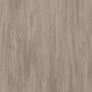 Covor PVC tip linoleum Tarkett VYLON PLUS - Vylon SAND DARK 0588