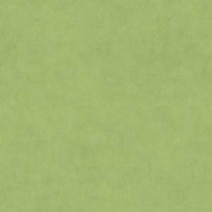 Linoleum Covor PVC TAPIFLEX ESSENTIAL 50 - Stamp GREEN