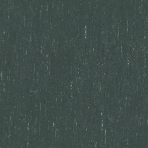 Linoleum Covor PVC Tarkett Linoleum Trentino xf²™ Silencio 18dB (3,8 mm) - Trentino GREY PEPPER 503