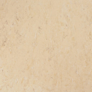 Linoleum Tarkett Veneto xf2 Bfl - Veneto NEUTRAL 710
