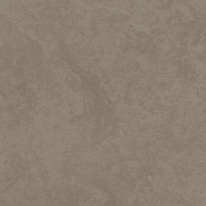 Linoleum Tarkett STYLE EMME SILENCIO xf²™ 18 dB - Style Emme VELLUTO 203