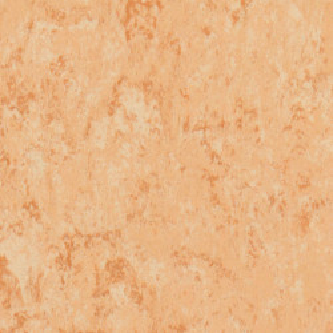 Linoleum Tarkett Veneto xf2 Bfl - Veneto CORAL 615