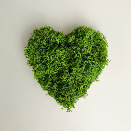 Magnet in forma de inima cu licheni