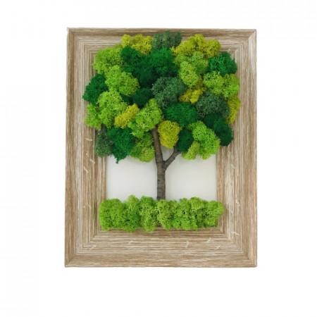 Tablou cu pomisor verde din licheni
