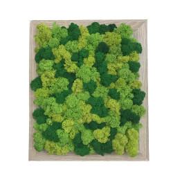 Tablou cu mai multe nuante de verde din licheni