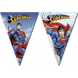 Poze Banner stegulete Superman